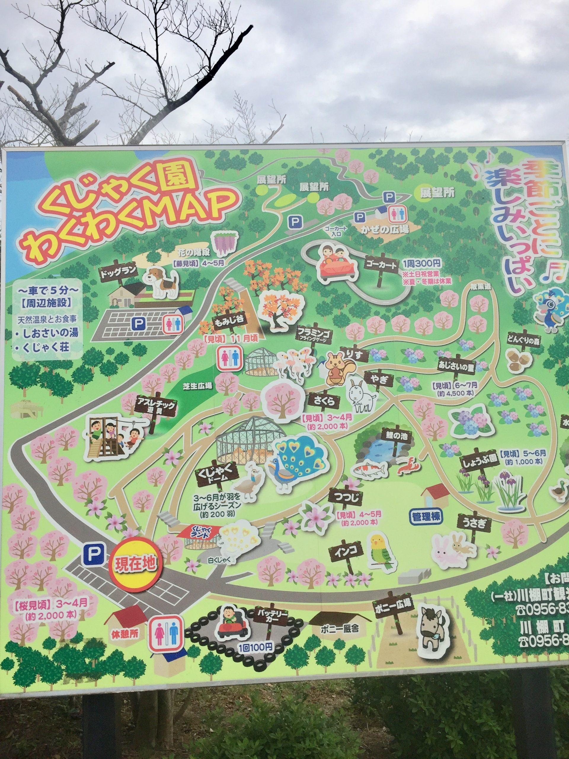 くじゃく園!長崎で無料のおすすめ動物園にいってみた!ヒナが可愛い!